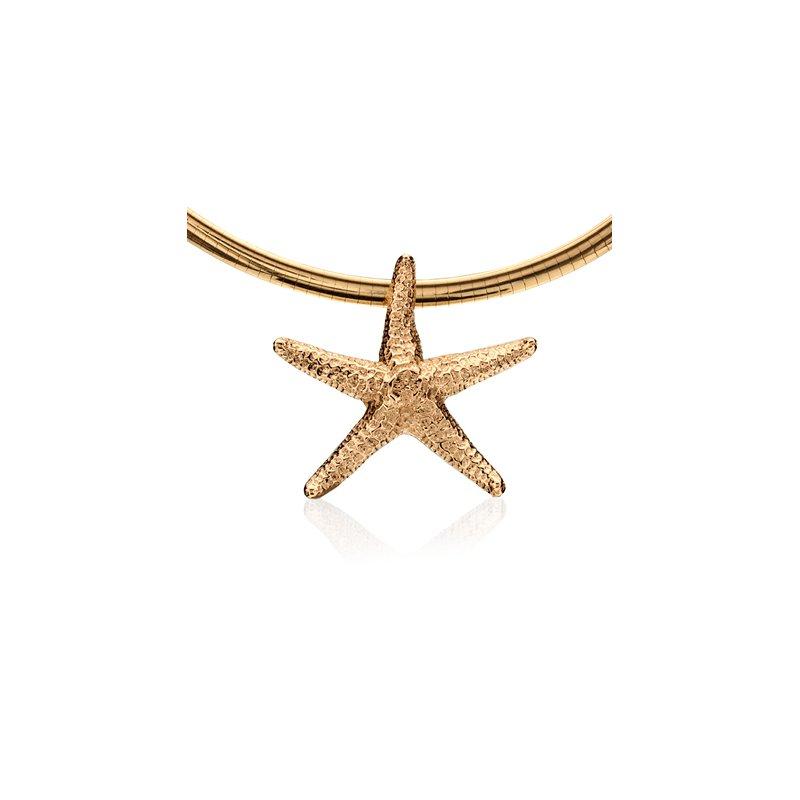 Starfish slide