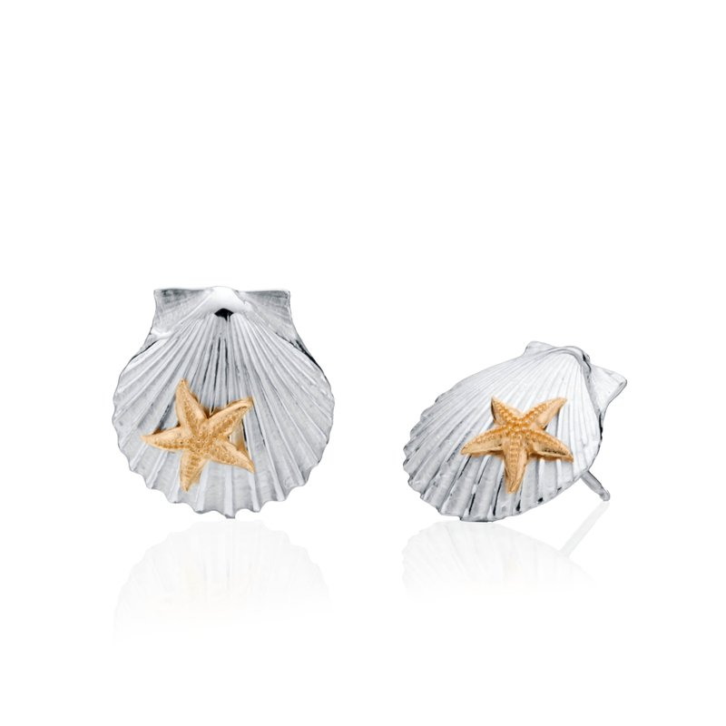 Chilmark Scallop Shell with 14k gold Starfish earrings