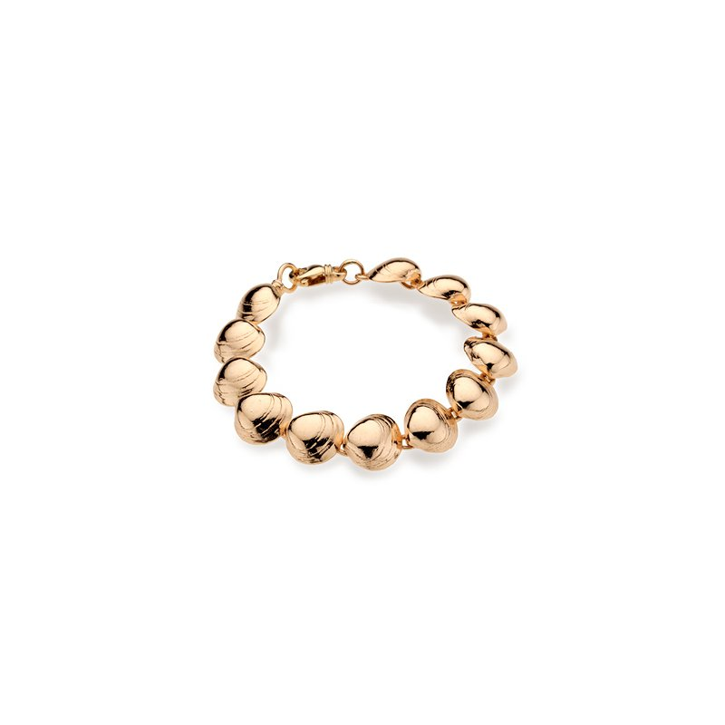 West Tisbury Baby Clam Shell bracelet