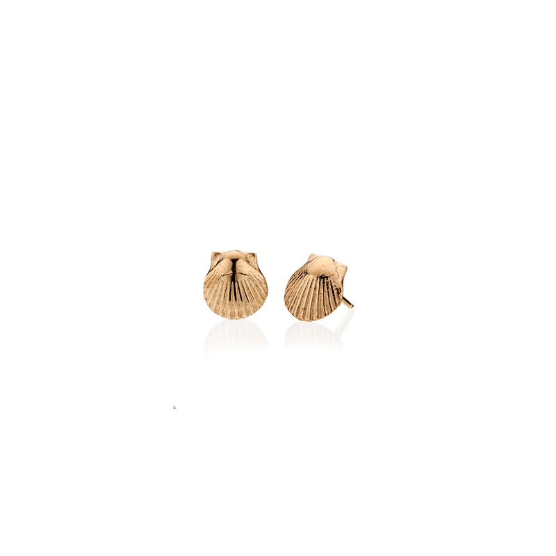 Tiny Scallop Shell earrings