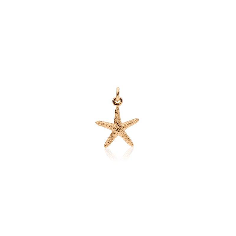 Starfish small charm