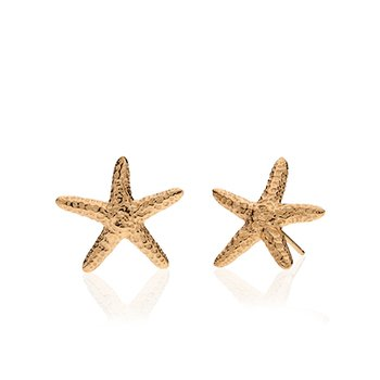 Starfish small earrings