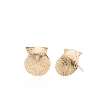 Chilmark Scallop Shell small earrings