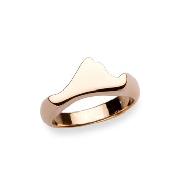 Contemporary Martha's Vineyard ring