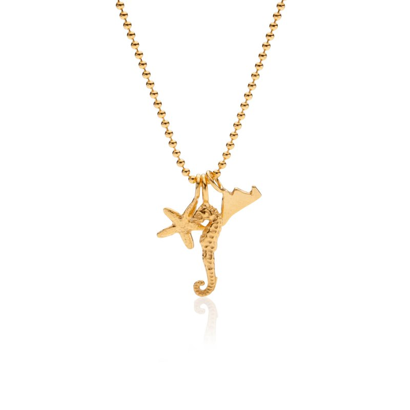 Mini Charm Necklace with Martha's Vineyard, Seahorse and Starfish in vermeil