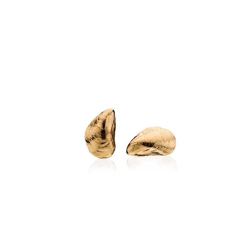 Squibnocket Mussel Shell earrings