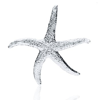 Gay Head Starfish pin pendant
