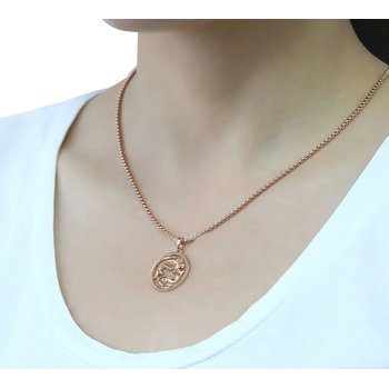 - 14k Rose Gold Plated Steel Zodiac Birth Sign Horoscope Constellation Pendant with Chain Necklace
