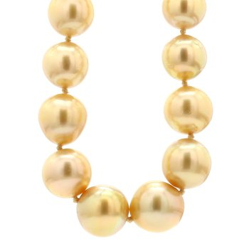 Cultured Golden South Sea Necklace