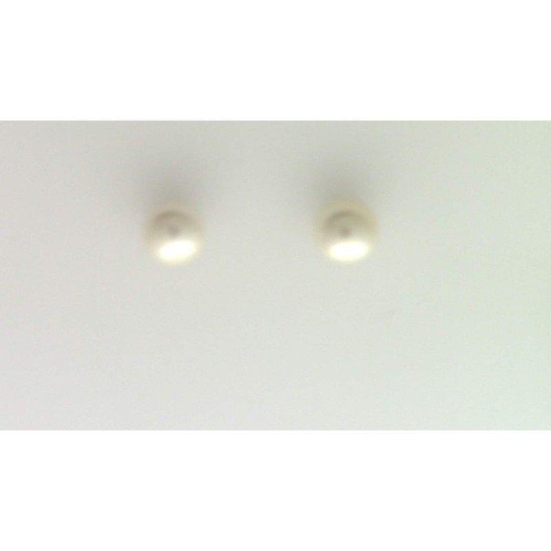 Pugh's Signature 14k Yellow Gold Akoya Cultured Pearl Earrings