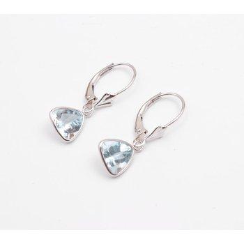 14k White Gold Aquamarine Earrings