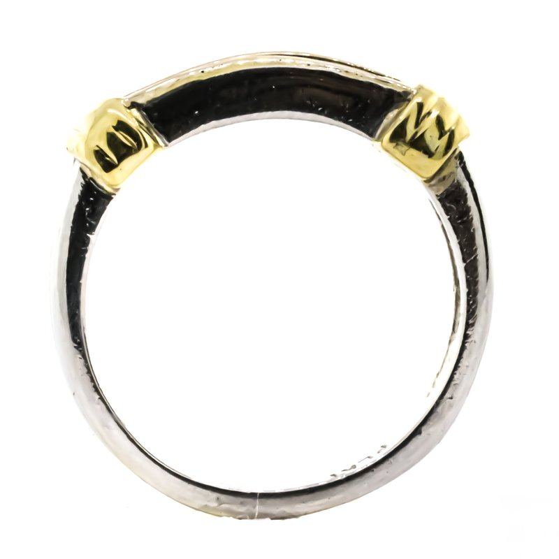 Estate Jewelry Platinum and 18K Gold Princess Cut Diamond Band