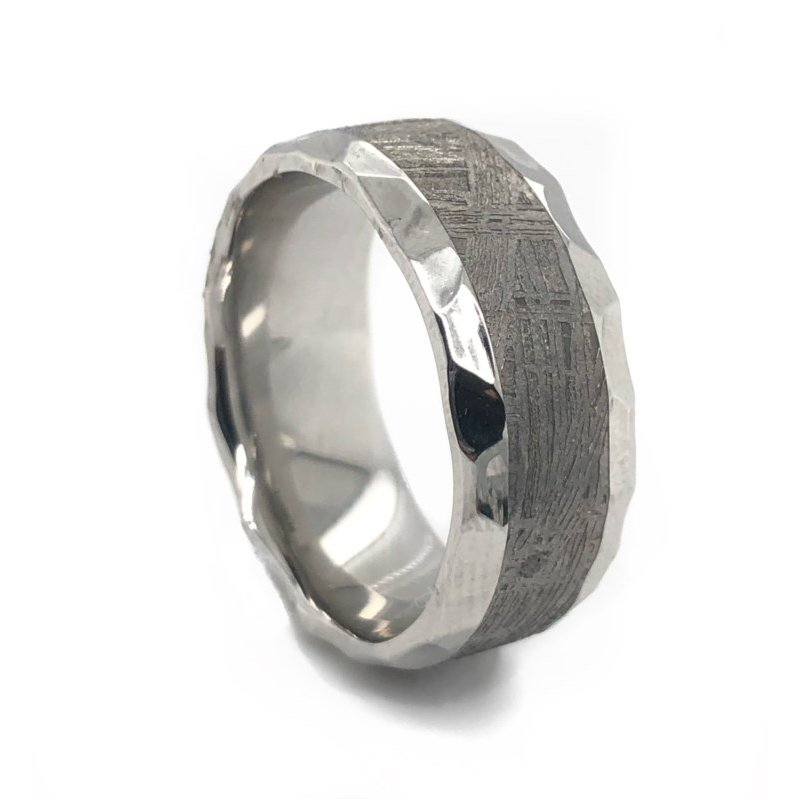 Lauray's Signature Collection Cobalt Chrome Meteorite Band