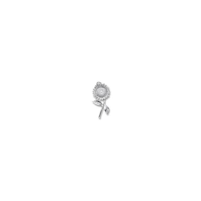 Rembrandt Charms 640-05737