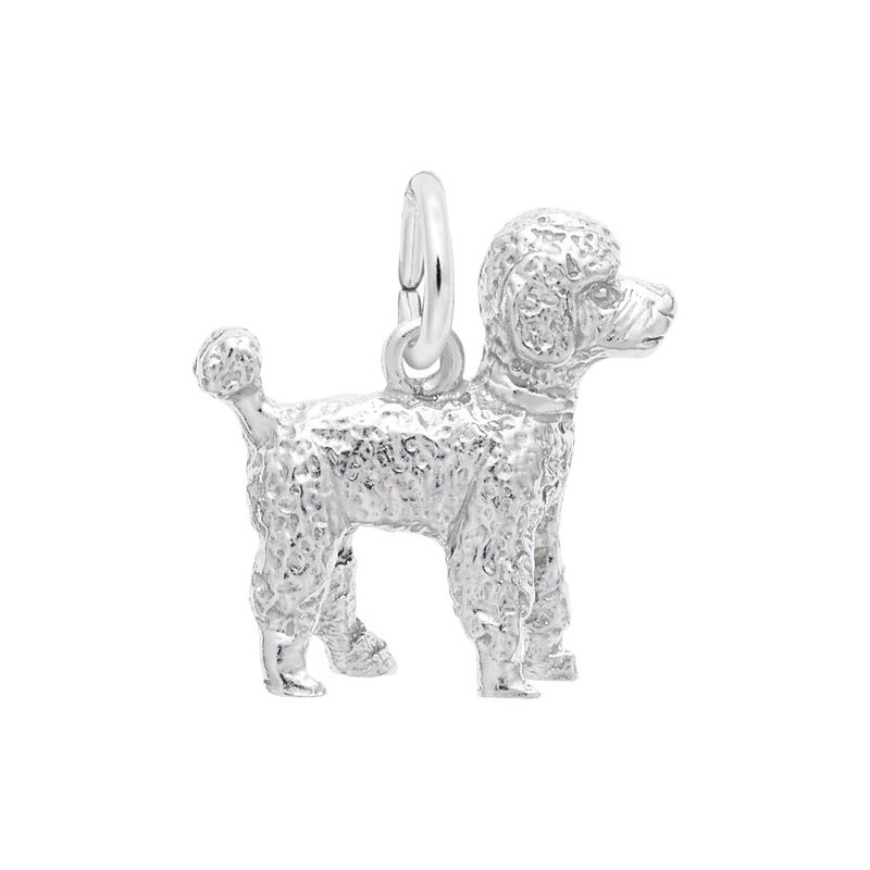 Rembrandt Charms 640-08856