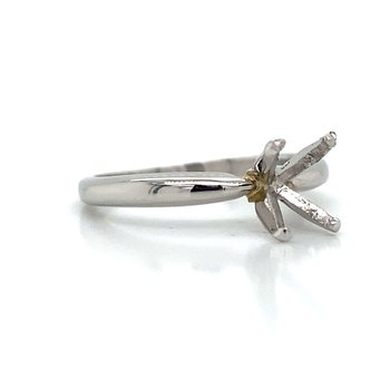 Platinum 4-Prong Setting