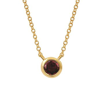 January Birthstone Necklace in 10K Yellow Gold