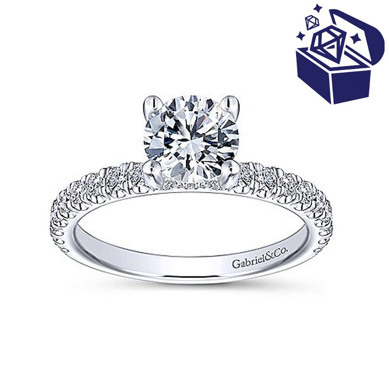 Treasure Hunt Value 1/2ct tw Diamond Engagement Ring Setting in 14K White Gold