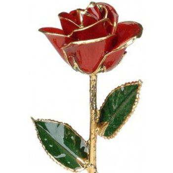 Red Rose - 24 KT Gold Trimmed