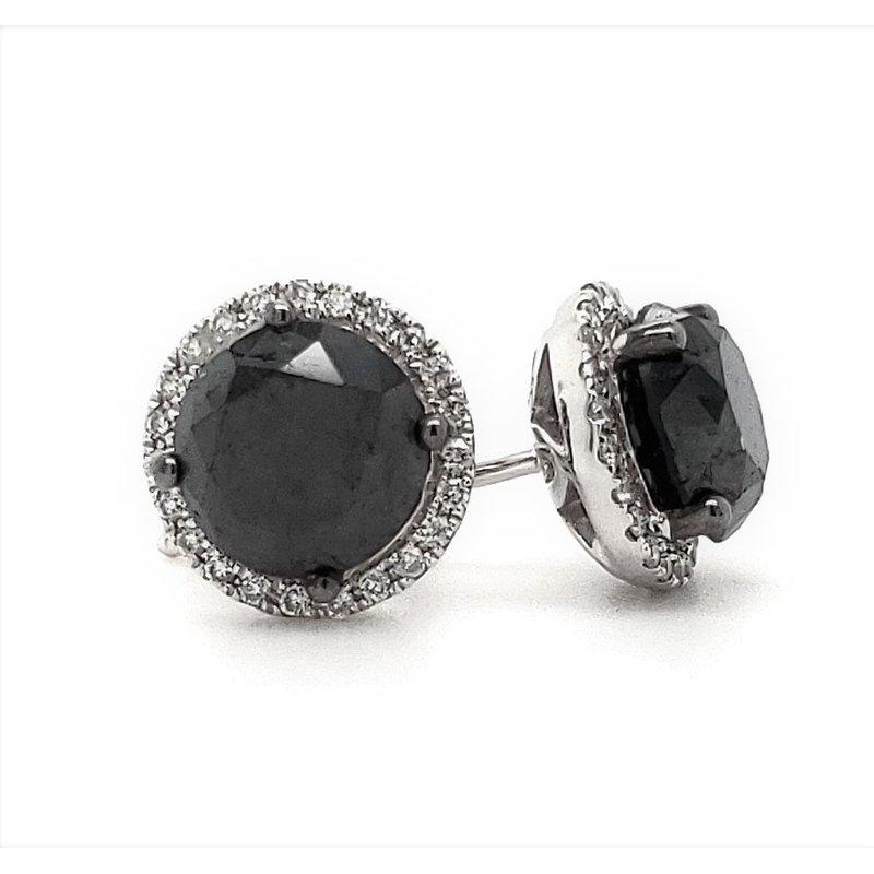Sartor Hamann Closeouts Black Diamond Earrings