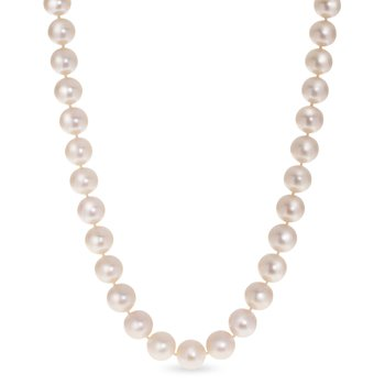 "16"" Freshwater Pearl Necklace"