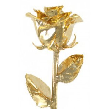 All Gold Rose - 24KT Yellow Gold Dipped