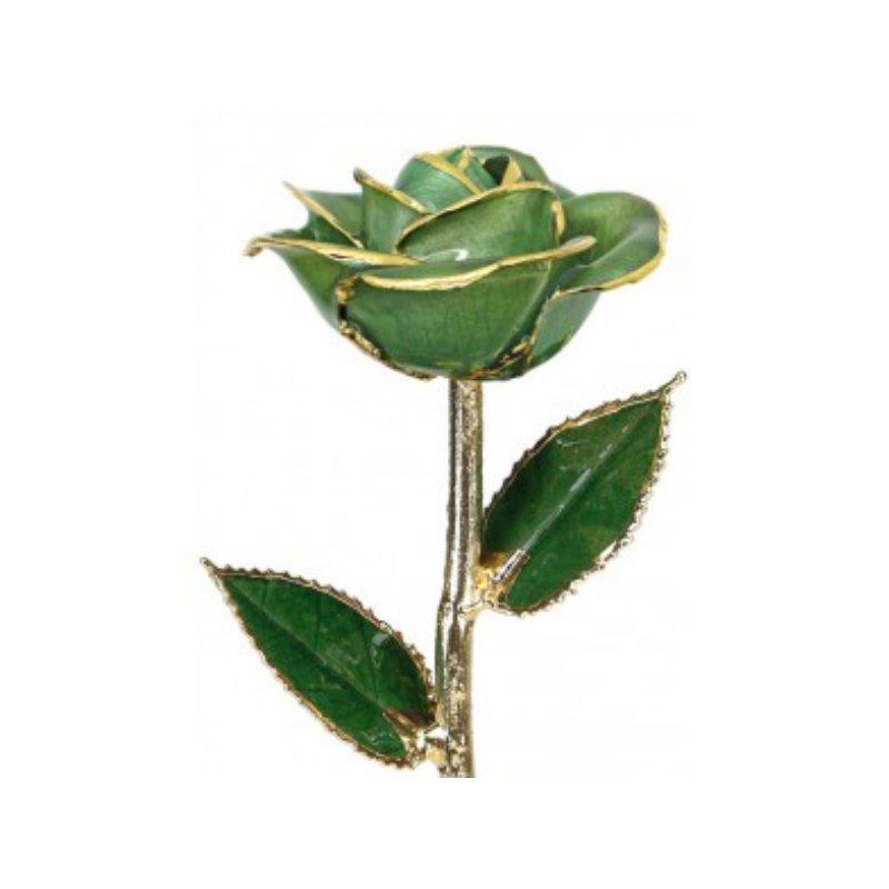Sartor Hamann Signature Light Green Rose - 24KT Trimmed