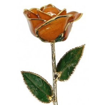 Orange Rose - 24KT Trimmed