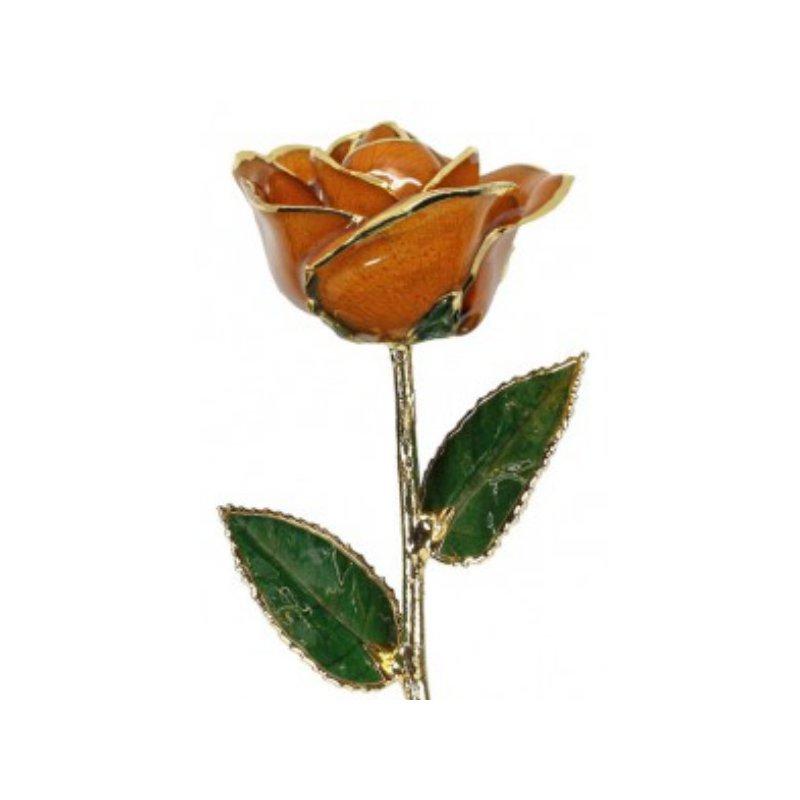 Sartor Hamann Signature Orange Rose - 24KT Trimmed