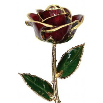 Burgandy Rose - 24KT Gold Trimmed