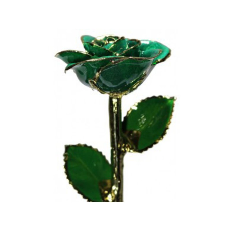 Sartor Hamann Signature 24K Gold Trimmed Roses in 13 Colors