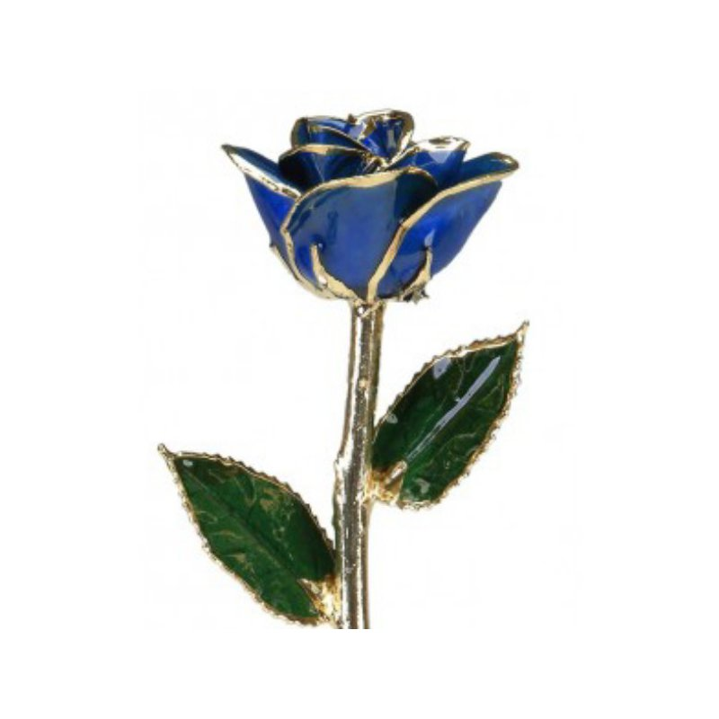 Sartor Hamann Signature Dark Blue Rose - 24KT Trimmed
