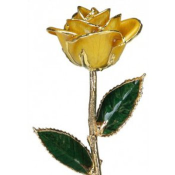 Yellow Rose - 24KT Trimmed