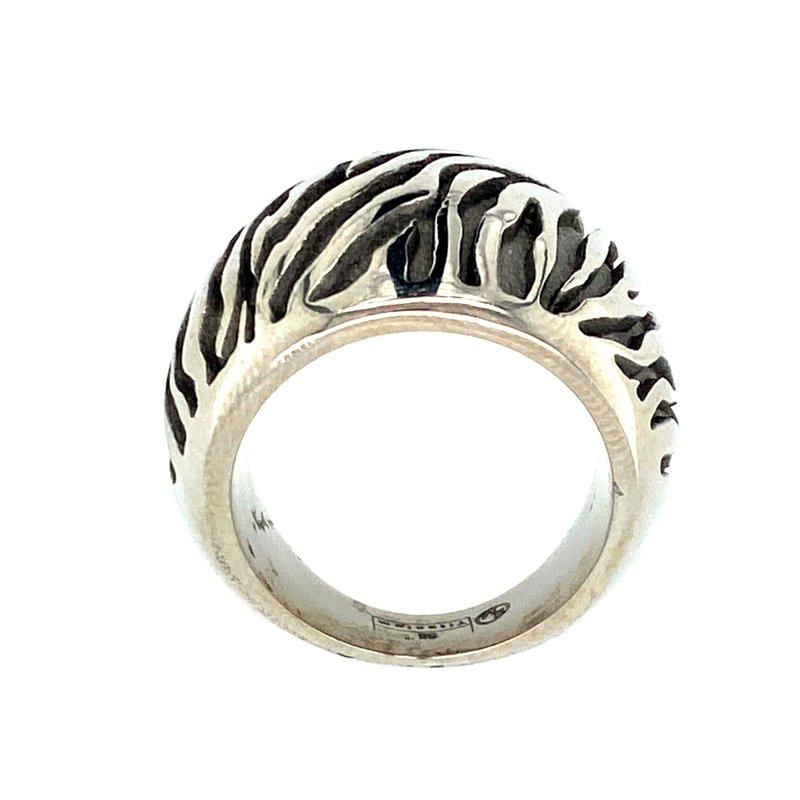 Ashley Men's Titanium Ring