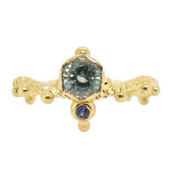 """Tiara"" Sapphire Ring in Yellow Gold"