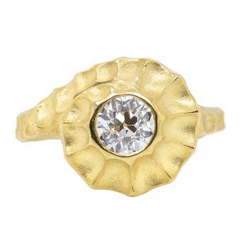 Baby Nautilus Ring