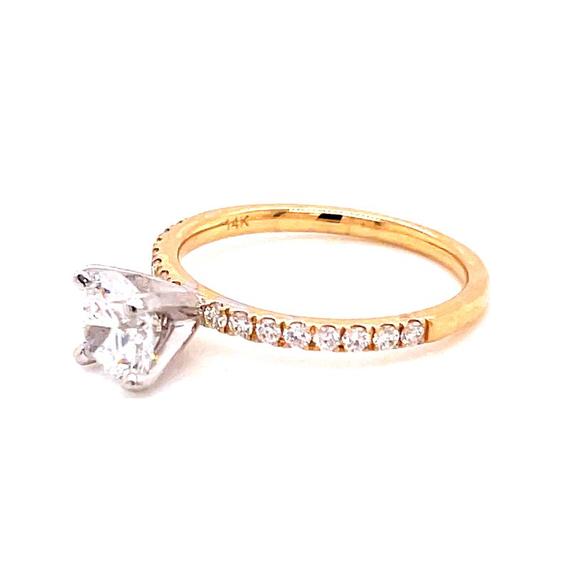 Corinth Collections  14 Karat Yellow Gold Brilliant Round Cut Center Solitaire Engagement Ring with Diamonds on Shank