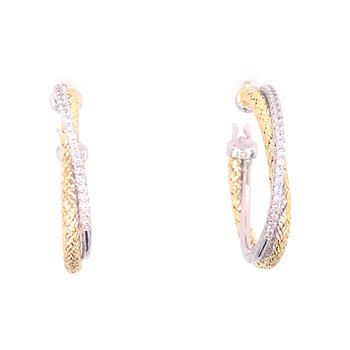 Two Tone Intertwined Oval Hoops