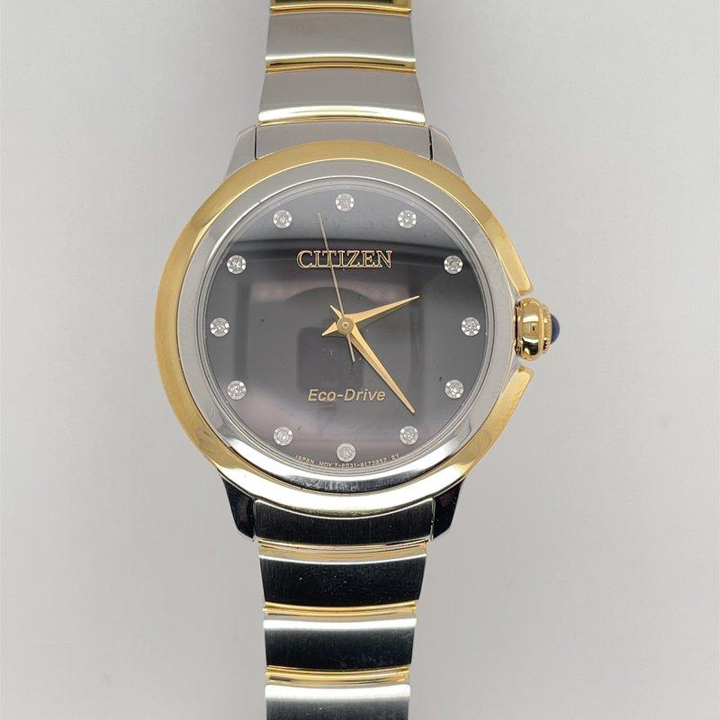 Citizen 893-01789