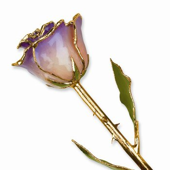 24Kt Gold Trimmed White & Blue Opal Rose