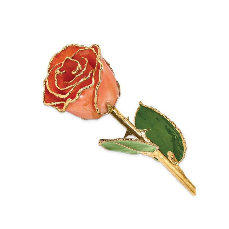 Lester Martin - Imports 24Kt Gold Trimmed Orange Rose