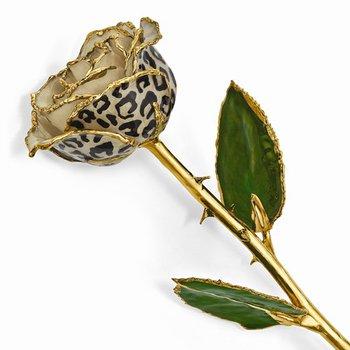 24k Gold Trim Cream/Black Leopard Rose