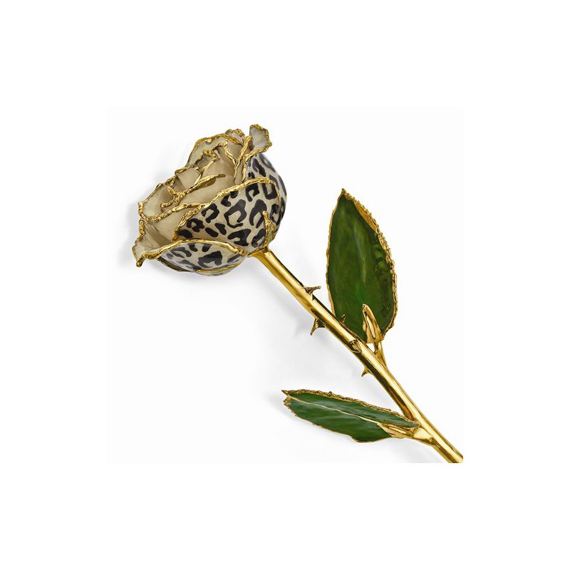 Lester Martin - Imports 24k Gold Trim Cream/Black Leopard Rose