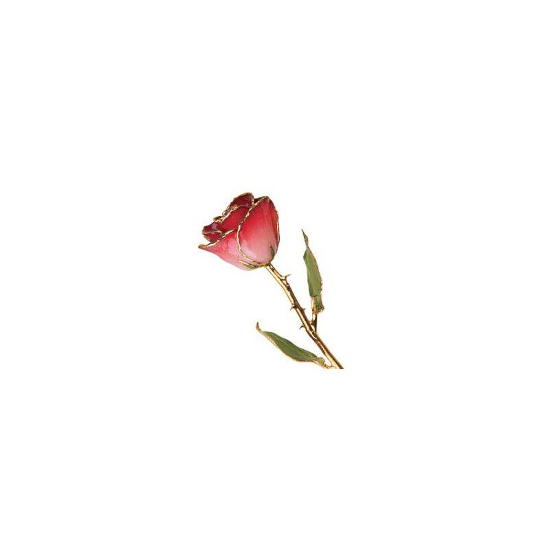 Lester Martin - Imports 24Kt Gold Trimmed Pink & Burgundy Rose