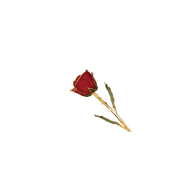Lester Martin - Imports 24Kt Gold Trimmed Red Rose
