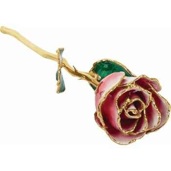 24k Lacquered Frozen White & Red Rose with Gold Trim