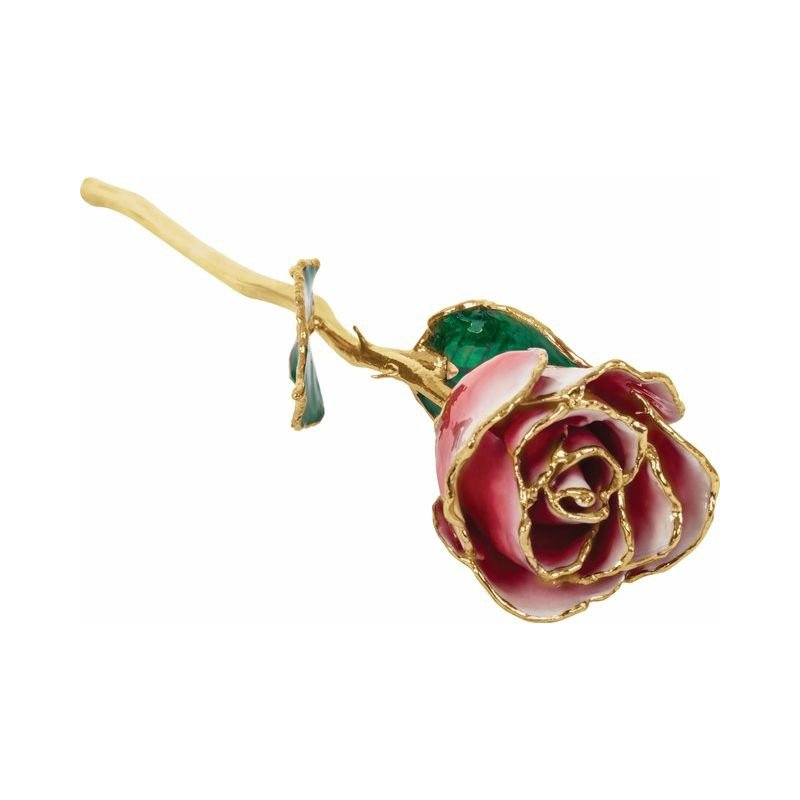 Casale Collections 24k Lacquered Frozen White & Red Rose with Gold Trim