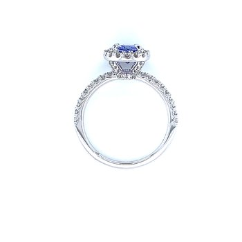 Tanzanite Awaiting Wings in 14k White Gold