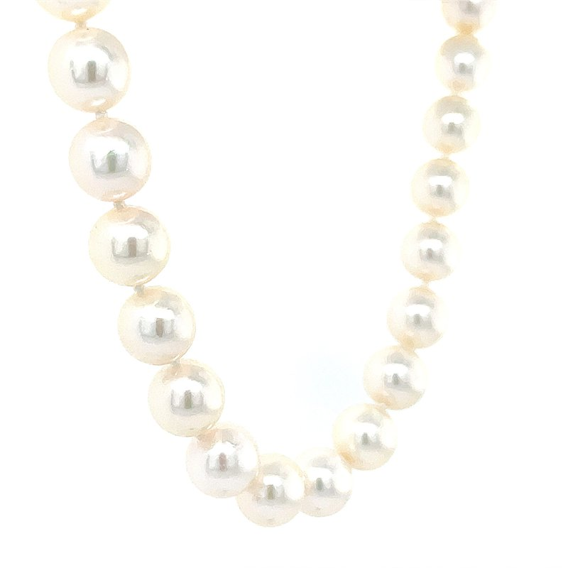 Bryan Beauties 8.5mm Akoya Cultured Pearls