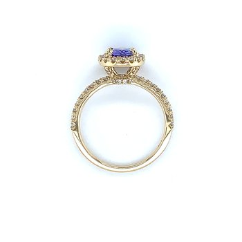 Tanzanite Awaiting Wings in 14k Yellow Gold